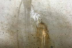 Leaking and cracked concrete basement wall